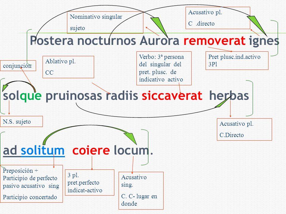 Acusativo pl. C .directo. Nominativo singular. sujeto.