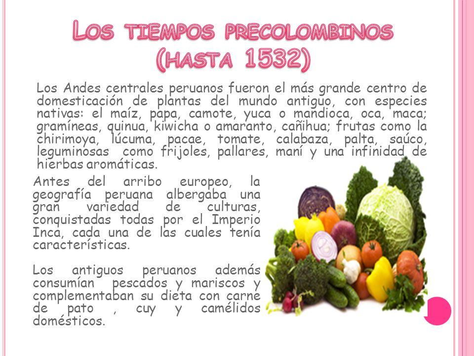 Los tiempos precolombinos (hasta 1532)