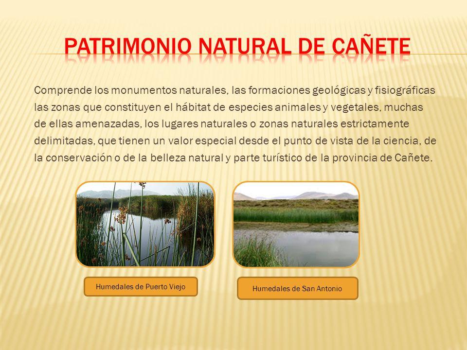 PATRIMONIO NATURAL DE CAÑETE