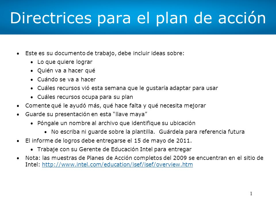 Directrices para el plan de acción