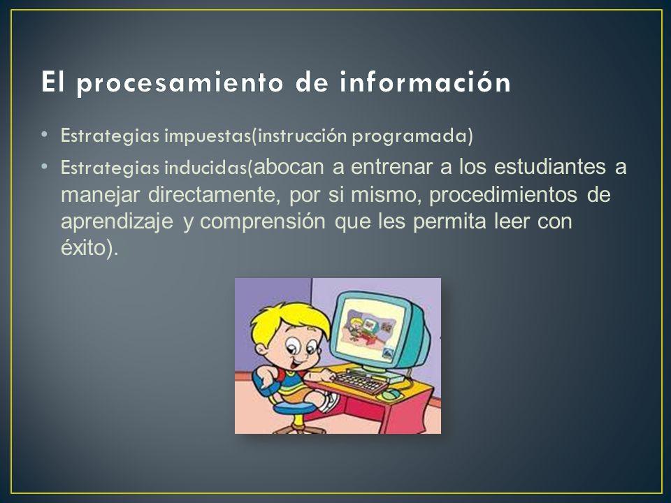 El procesamiento de información