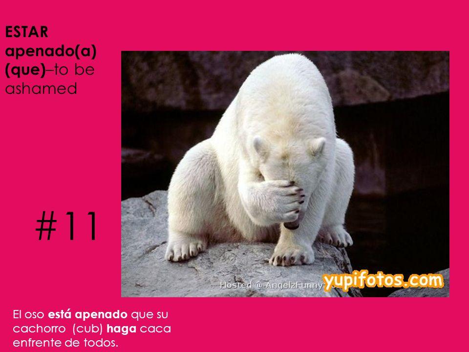 #11 ESTAR apenado(a) (que)–to be ashamed