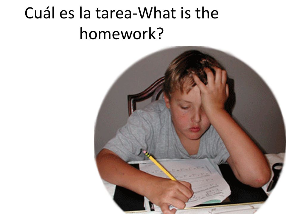 Cuál es la tarea-What is the homework