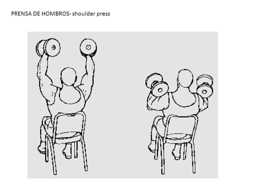 PRENSA DE HOMBROS- shoulder press