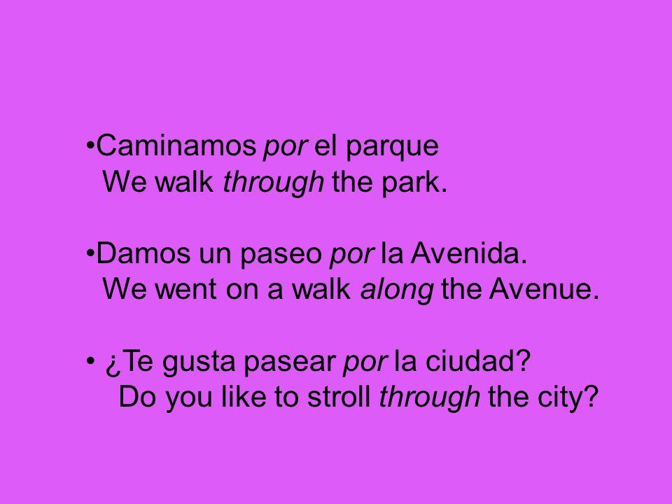 Caminamos por el parque