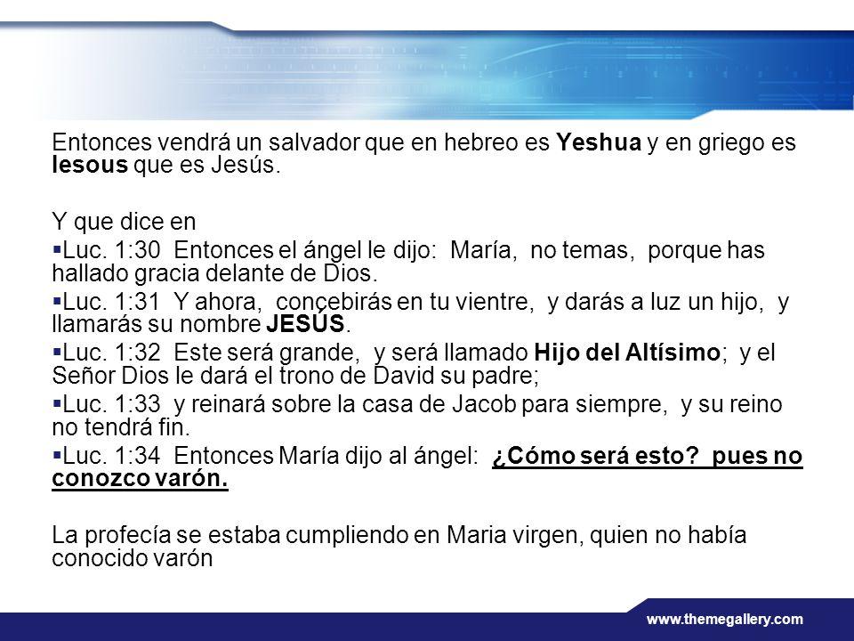 Entonces vendrá un salvador que en hebreo es Yeshua y en griego es Iesous que es Jesús.