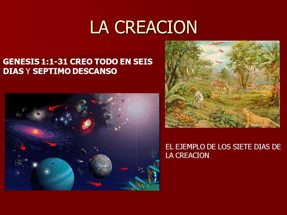 LA CREACION GENESIS 1:1-31 CREO TODO EN SEIS DIAS Y SEPTIMO DESCANSO