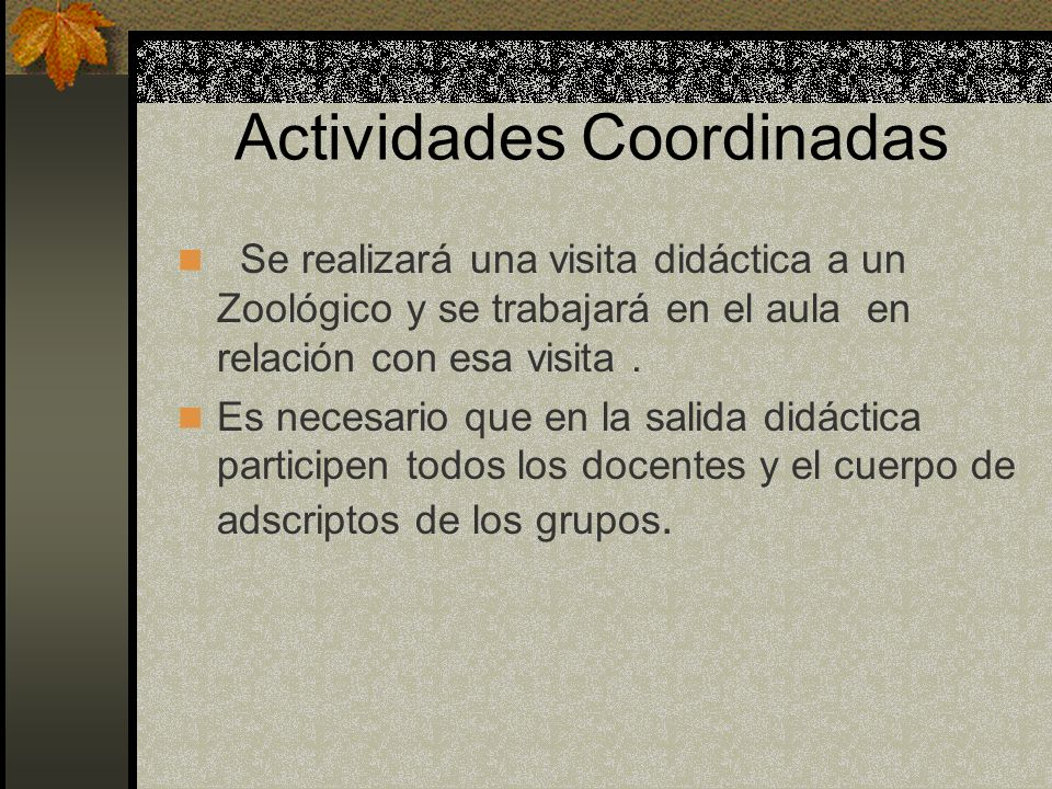 Actividades Coordinadas