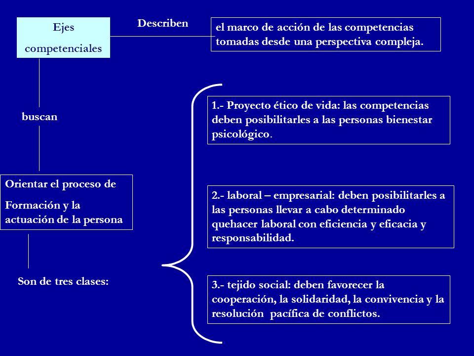 Describen Ejes. competenciales. el marco de acción de las competencias tomadas desde una perspectiva compleja.