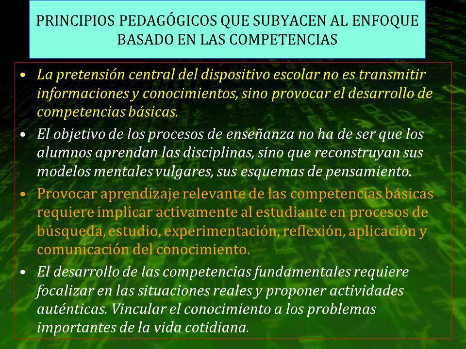 PRINCIPIOS PEDAGÓGICOS QUE SUBYACEN AL ENFOQUE BASADO EN LAS COMPETENCIAS