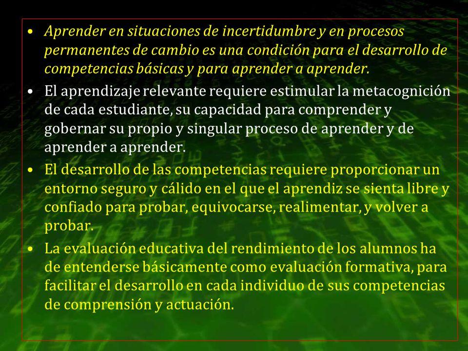 Aprender en situaciones de incertidumbre y en procesos permanentes de cambio es una condición para el desarrollo de competencias básicas y para aprender a aprender.