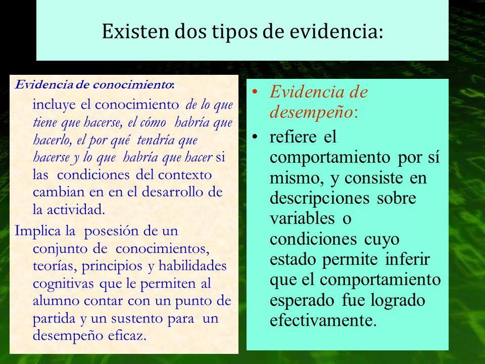 Existen dos tipos de evidencia: