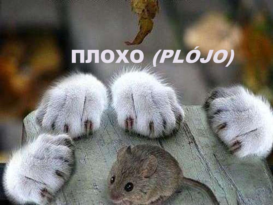 ПЛОХО (PLÓJO)
