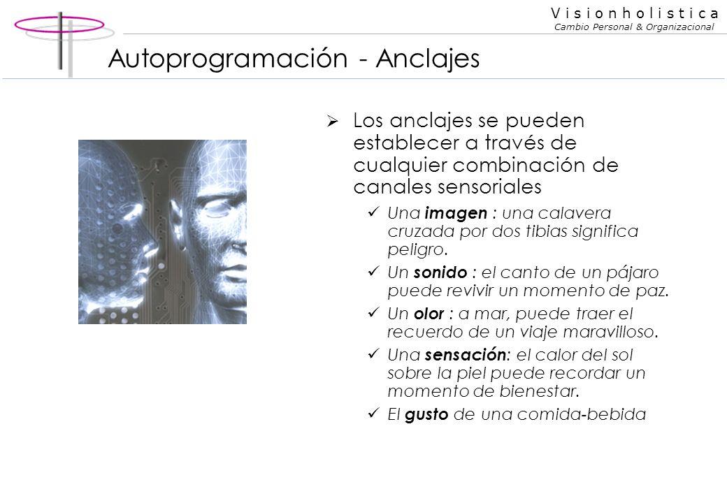 Autoprogramación - Anclajes