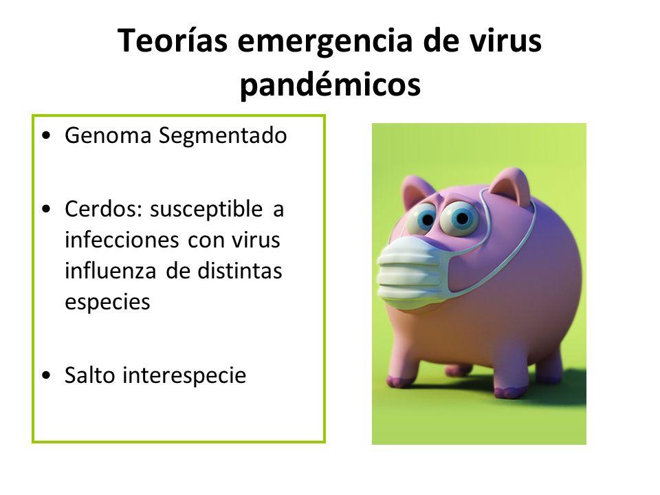 Teorías emergencia de virus pandémicos