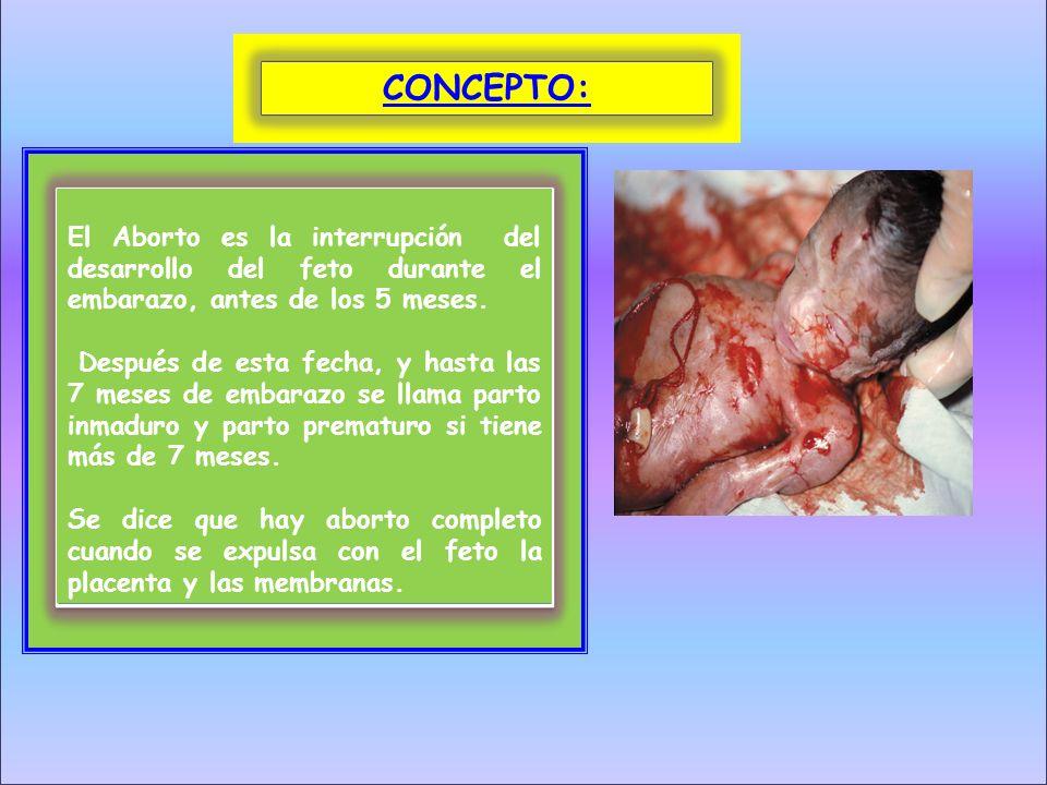 CONCEPTO:El Aborto es la interrupción del desarrollo del feto durante el embarazo, antes de los 5 meses.