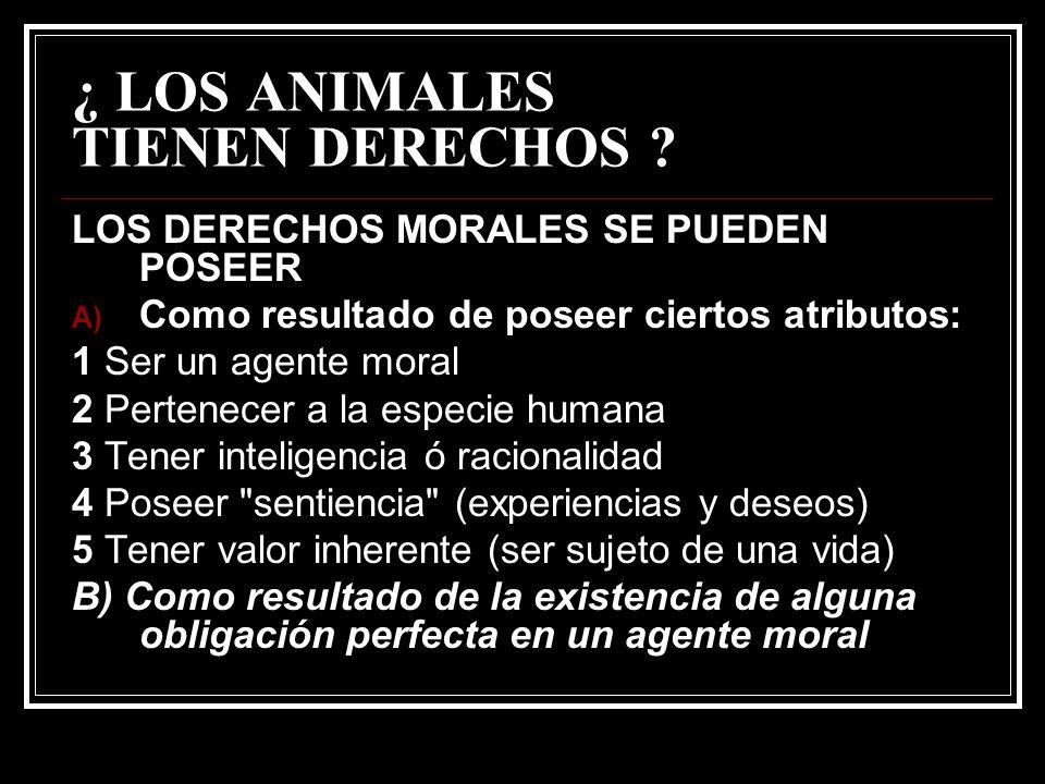 ¿ LOS ANIMALES TIENEN DERECHOS