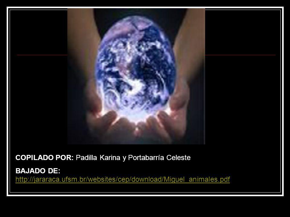 COPILADO POR: Padilla Karina y Portabarría Celeste