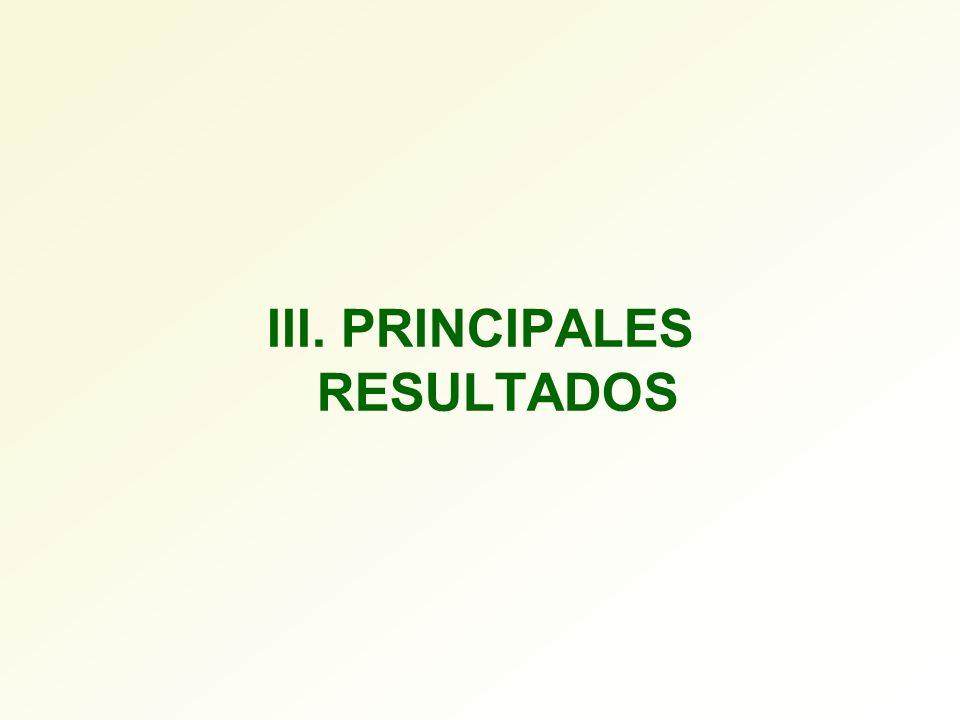 III. PRINCIPALES RESULTADOS