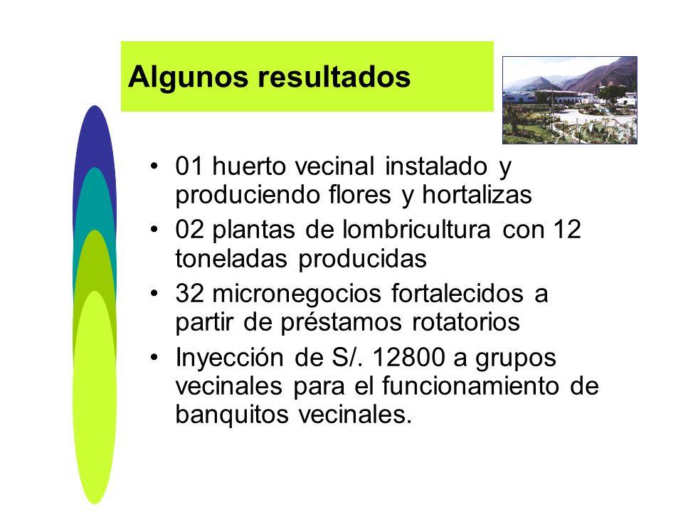 Algunos resultados 01 huerto vecinal instalado y produciendo flores y hortalizas. 02 plantas de lombricultura con 12 toneladas producidas.
