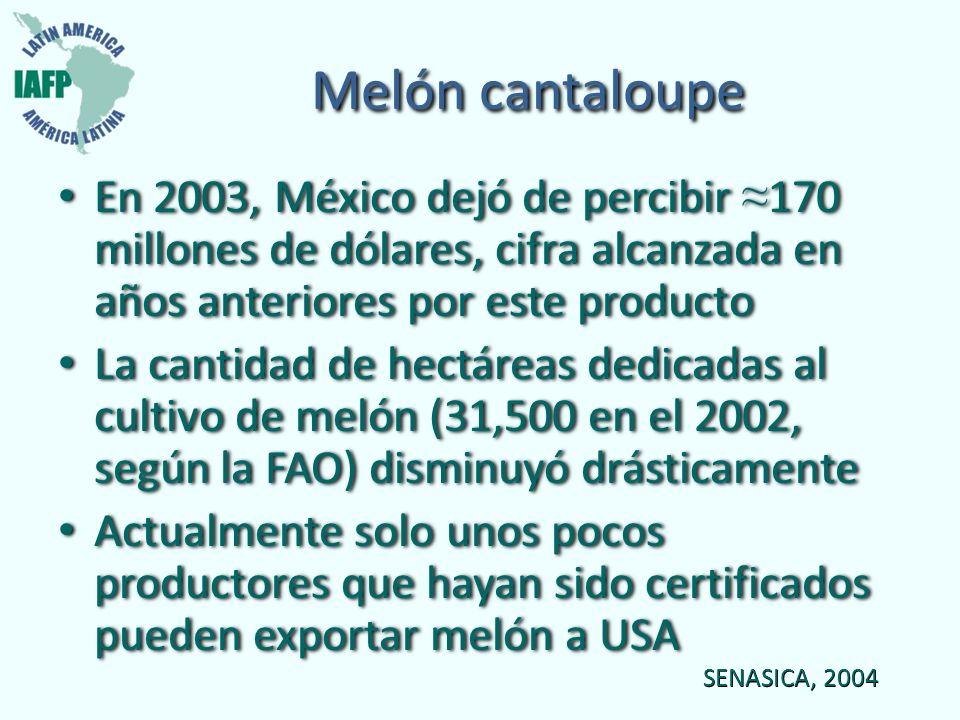 Melón cantaloupe En 2003, México dejó de percibir ≈170 millones de dólares, cifra alcanzada en años anteriores por este producto.
