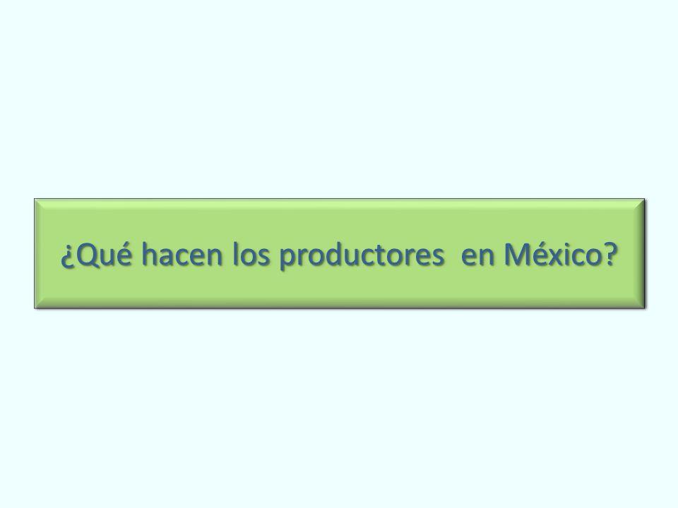 ¿Qué hacen los productores en México