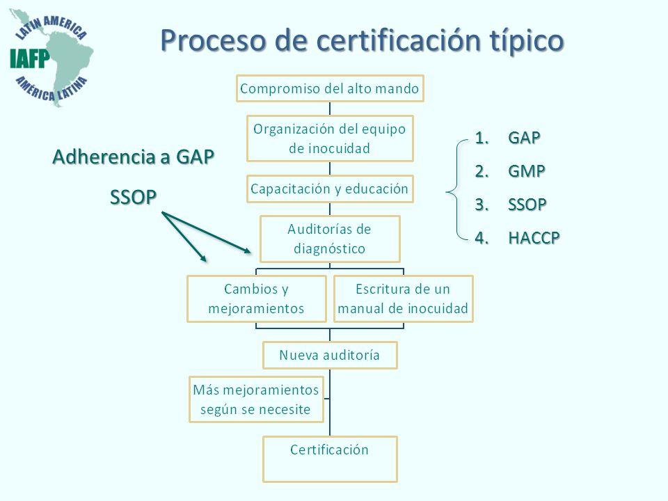 Proceso de certificación típico