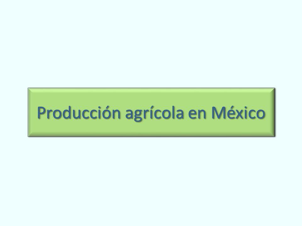 Producción agrícola en México