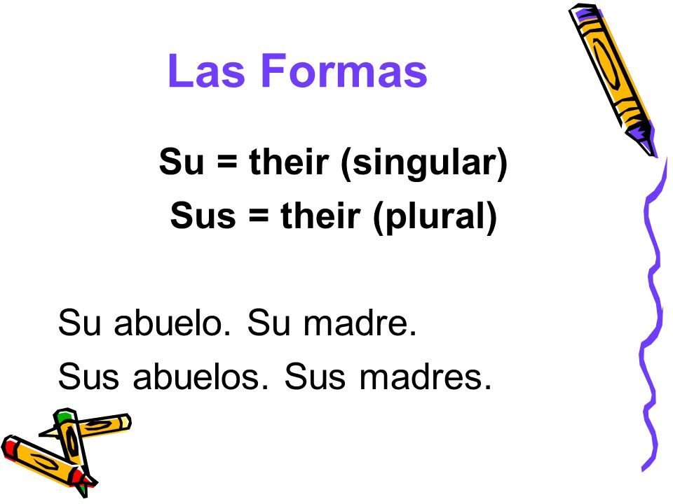 Las Formas Su = their (singular) Sus = their (plural)