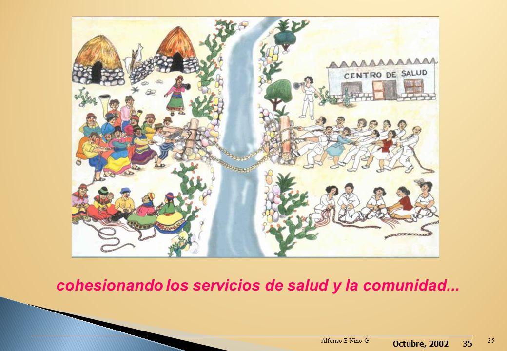 cohesionando los servicios de salud y la comunidad...