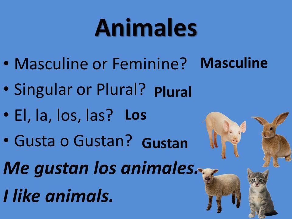 Animales Me gustan los animales. I like animals.