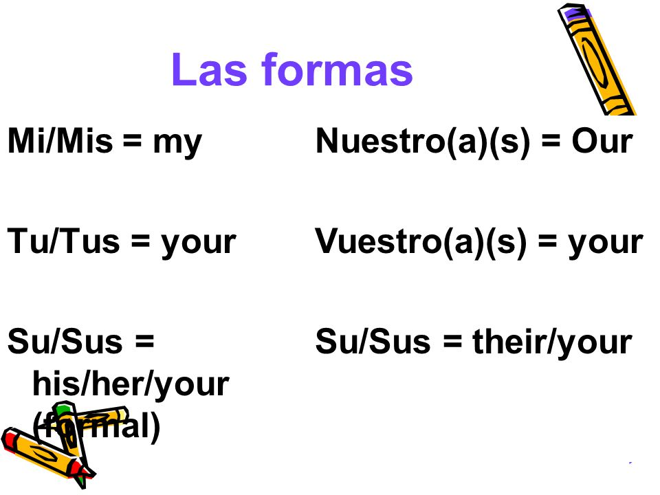 Las formas Mi/Mis = my Tu/Tus = your Su/Sus = his/her/your (formal)