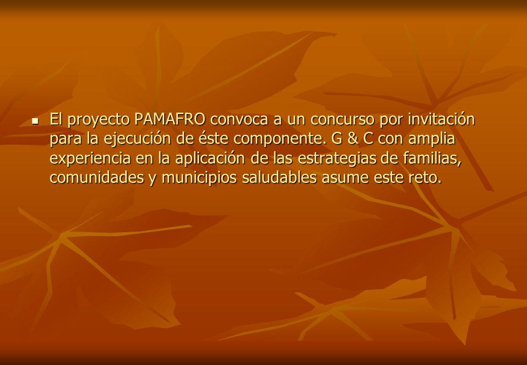 El proyecto PAMAFRO convoca a un concurso por invitación para la ejecución de éste componente.