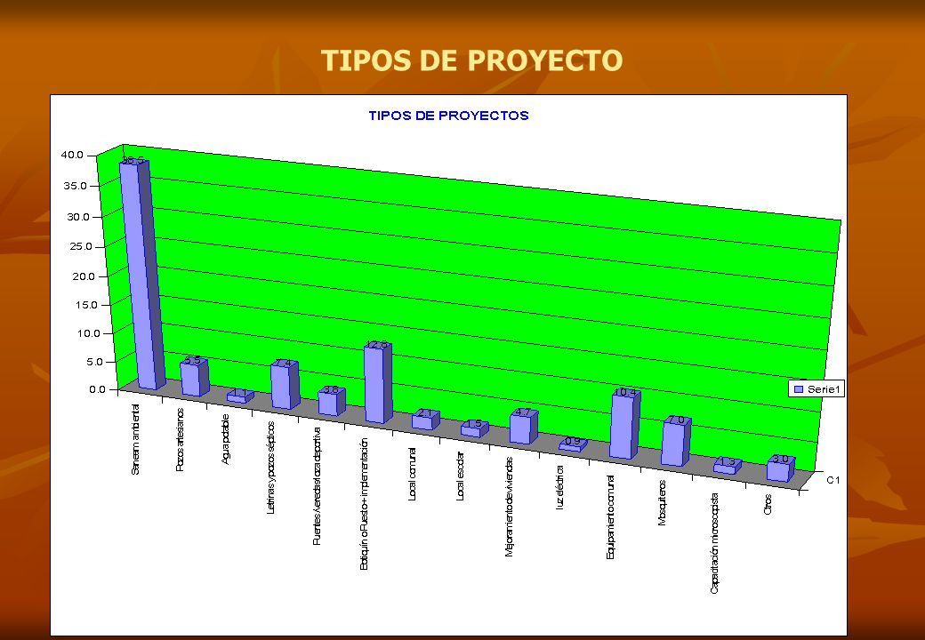TIPOS DE PROYECTO