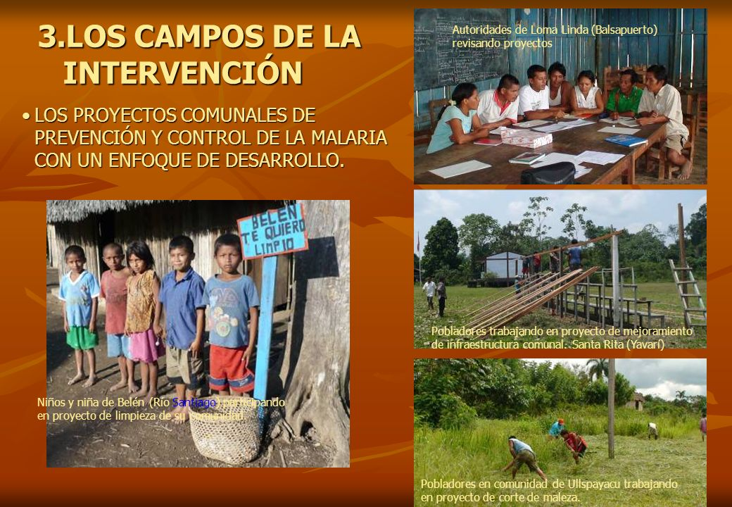 3.LOS CAMPOS DE LA INTERVENCIÓN