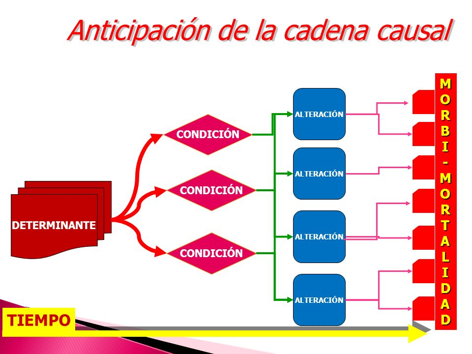 Anticipación de la cadena causal