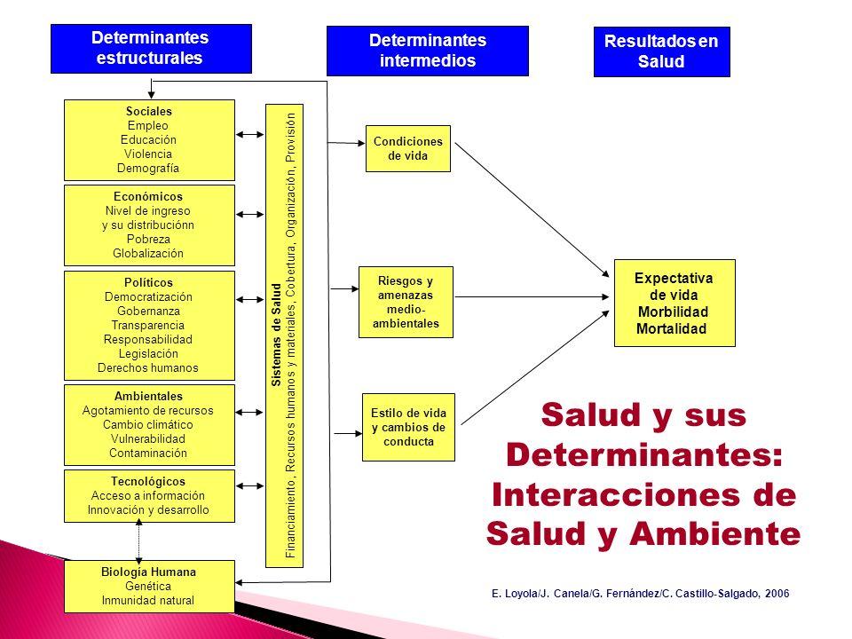 Salud y sus Determinantes: Interacciones de Salud y Ambiente