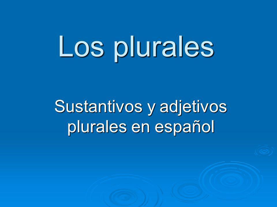 Sustantivos y adjetivos plurales en español