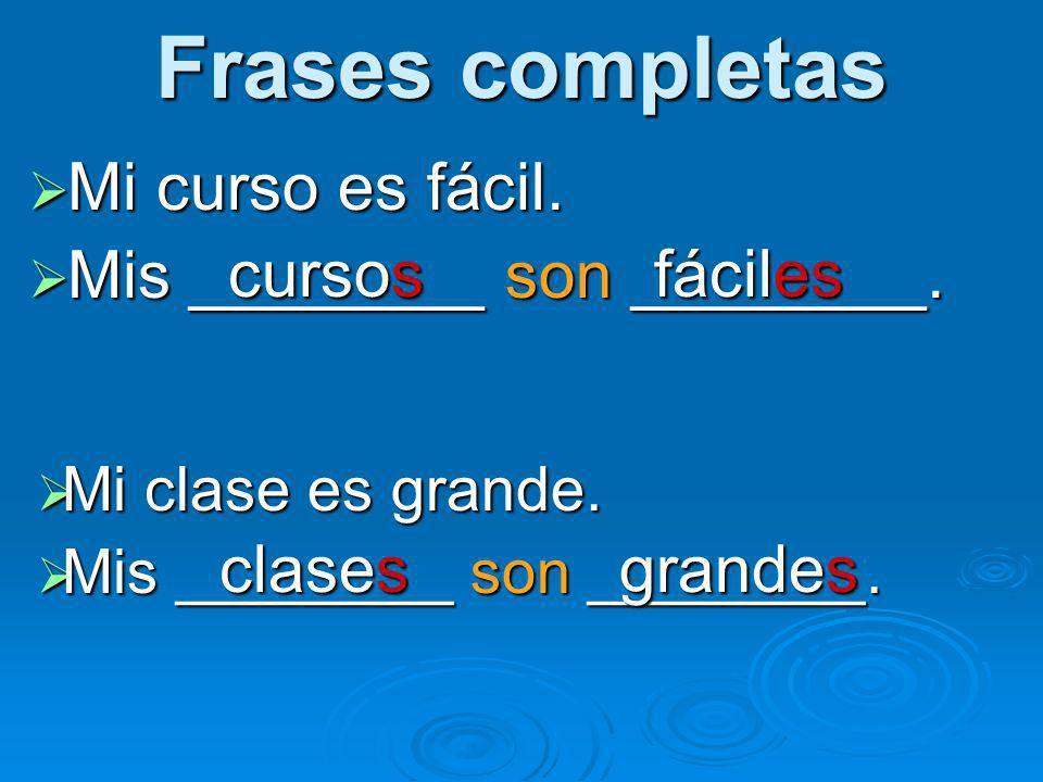 Frases completas Mi curso es fácil. Mis ________ son ________. cursos