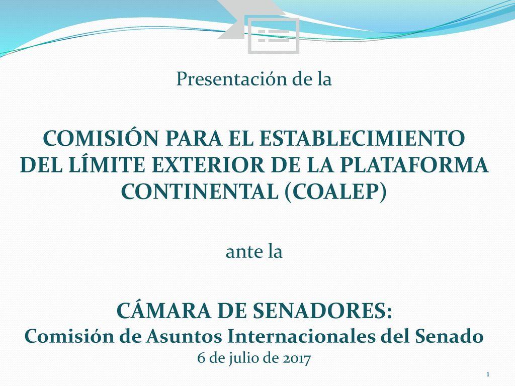 Presentaci n de la comisi n para el establecimiento del for La camara de senadores