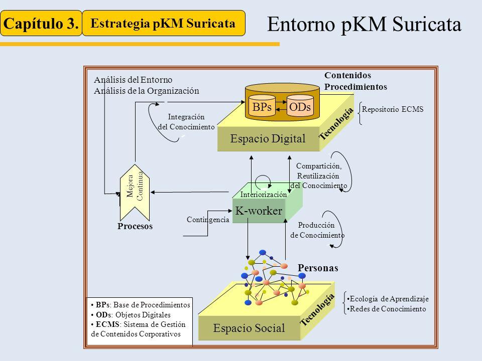 Estrategia pKM Suricata