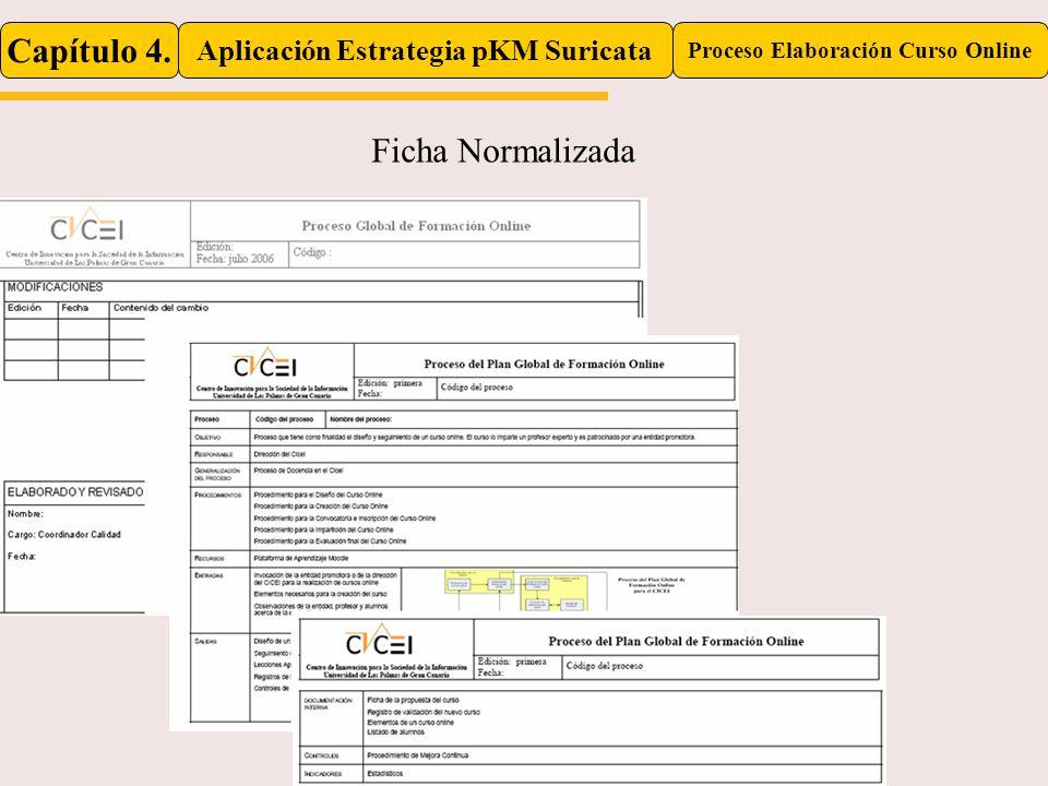 Aplicación Estrategia pKM Suricata Proceso Elaboración Curso Online