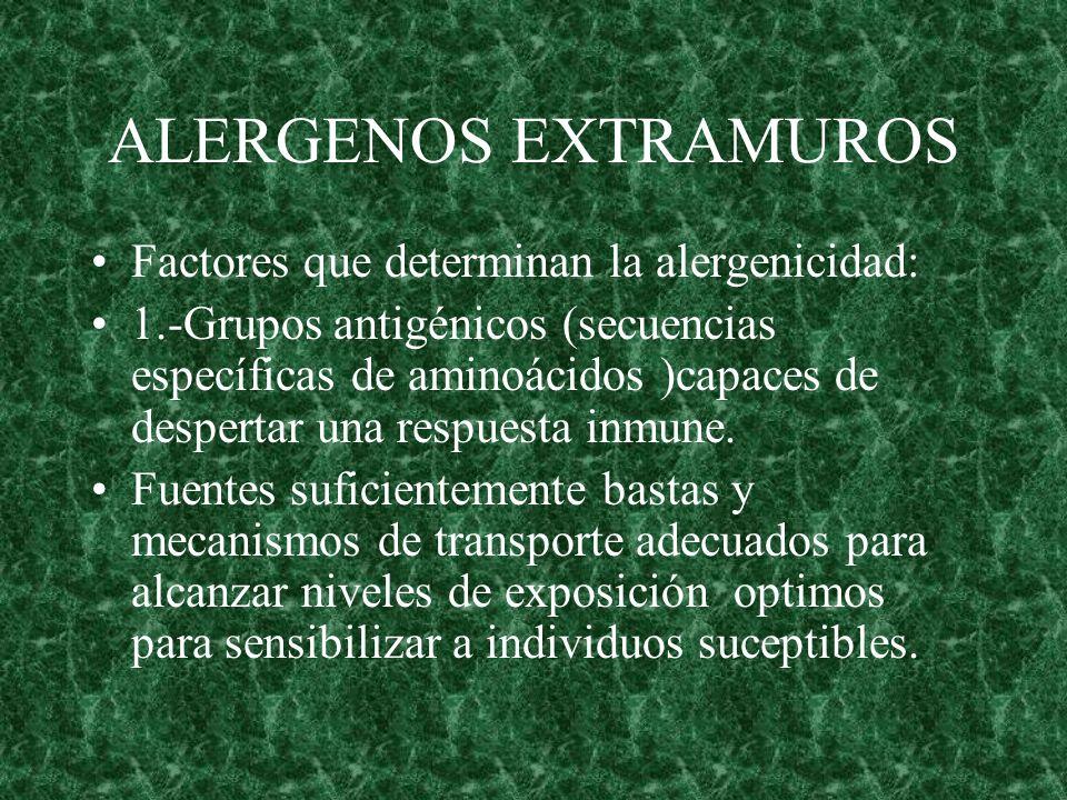 ALERGENOS EXTRAMUROS Factores que determinan la alergenicidad: