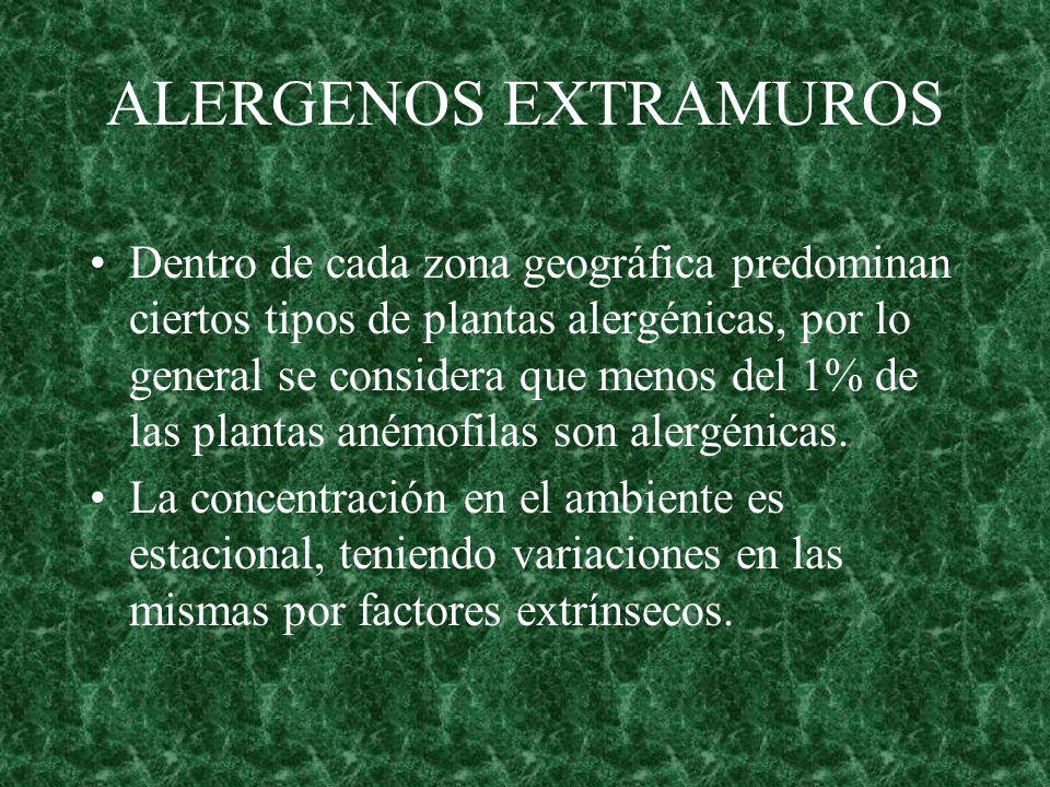 ALERGENOS EXTRAMUROS