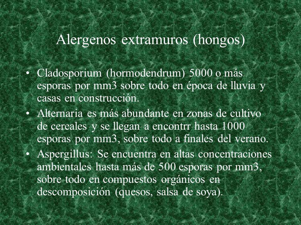Alergenos extramuros (hongos)