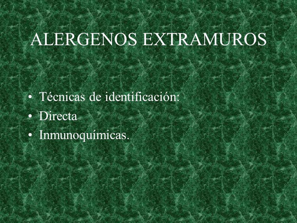 ALERGENOS EXTRAMUROS Técnicas de identificación: Directa
