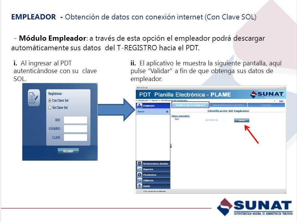 EMPLEADOR - Obtención de datos con conexión internet (Con Clave SOL)