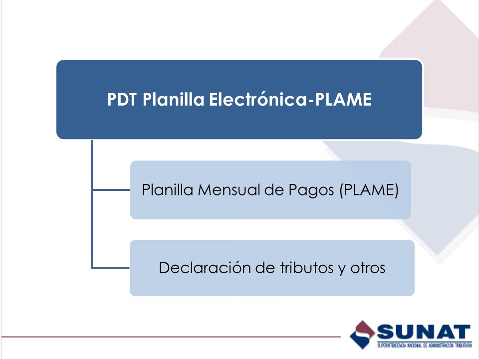 PDT Planilla Electrónica-PLAME