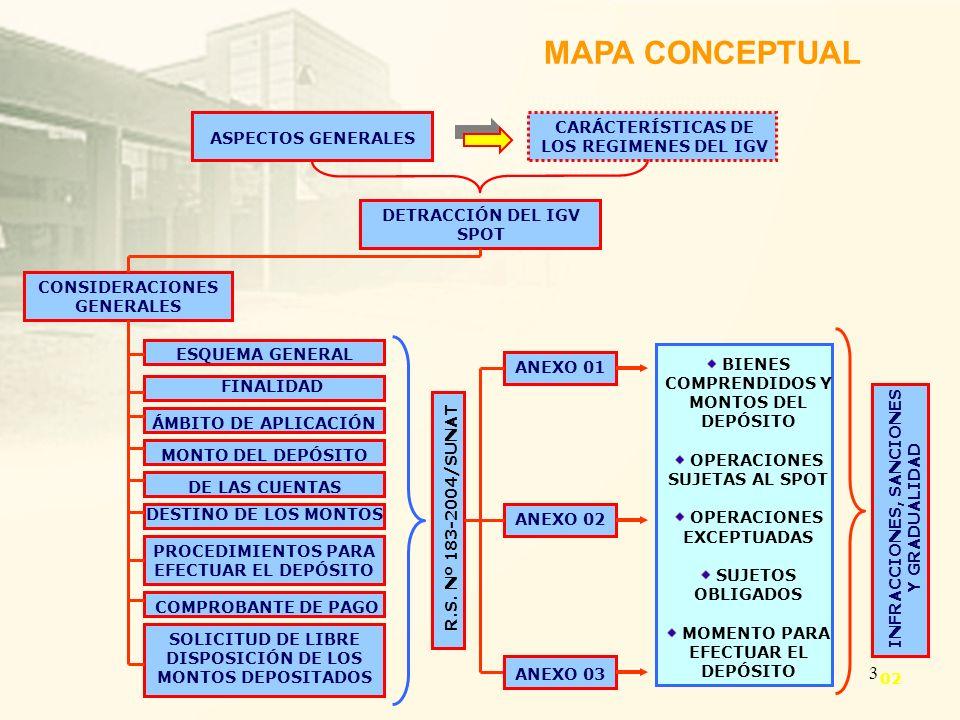 MAPA CONCEPTUAL CARÁCTERÍSTICAS DE ASPECTOS GENERALES