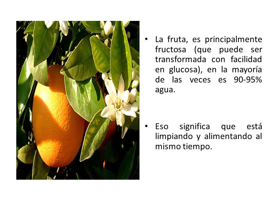 La fruta, es principalmente fructosa (que puede ser transformada con facilidad en glucosa), en la mayoría de las veces es 90-95% agua.